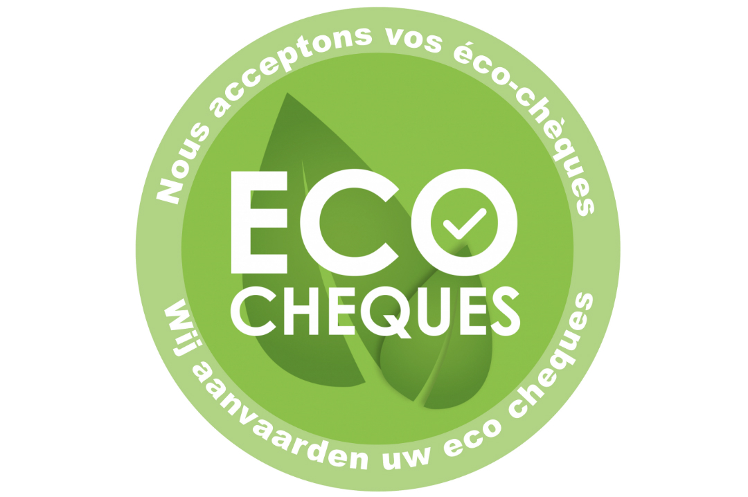 Eco Cheque Logo Blog